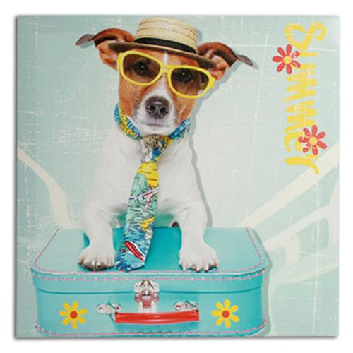 Hund mit Box<br>Koffer 40 x 40